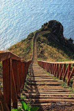 Madeira Island, Azores