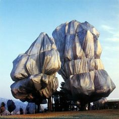Have you heard about Christo ? Christo Vladimirov Javacheff comes from Bulgaria and Jeanne-Claude Denat de Guillebon came from Morroco (she. Jean Tinguely, Christo Et Jeanne Claude, Christo Artist, Nouveau Realisme, Classical Realism, Conceptual Art, Art And Architecture, Installation Art, Contemporary Art