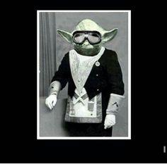 Master Mason Yoda
