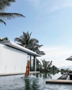 Dive into a luxurious respite at #SamujanaVilla16! Trivia: Villa 16 is the only villa in Samujana that is chemical and chlorine free! #Repost @jameyleefranz #SamujanaVillas #KohSamui #Thailand #AmazingThailand #LuxuryTravel Koh Samui, Samui Thailand, Tropical Garden, Luxury Villa, Luxury Travel, Diving, Trivia, Villas, Holiday