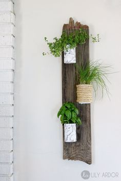 DIY Herb Wall Planters Oh boy I can't wait to use some of these purdy herbs. :D Let me start of by saying of this project is recycled materials. Tin cans, barn wood, and Wood Pallet Planters, Vertical Wall Planters, Herb Planters, Wood Pallets, Planter Ideas, Diy Wall Planter, Vase Ideas, Concrete Planters, Decor Ideas
