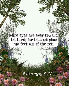 Psalm 25:15 KJV