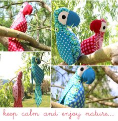 bunte freunde: Keep calm and enjoy nature....;-)