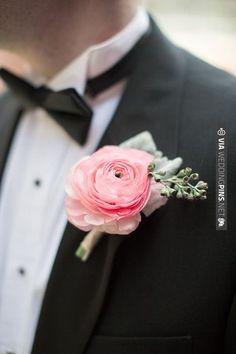 pink ranunculus boutonniere | Watson Studios | VIA #WEDDINGPINS.NET