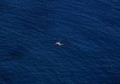«Το ζήτημα είναι από πού βλέπει κανείς τον ουρανό. Εγώ τον έχω δει από καταμεσίς της θάλασσας» ΟΔΥΣΣΕΑΣ ΕΛΥΤΗΣ  Στο απέραντο γαλάζιο του Αιγαίου, κάπου στην Πελοπόννησο, βυθίζεται ο Γερμανός τουρίστας της φωτογραφίας, απολαμβάνοντας τις ελληνικές διακοπές του. REUTERS/Yannis Behrakis #meetGreece