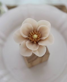 Beautiful wagashi