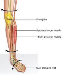 hip flexor pressure handout
