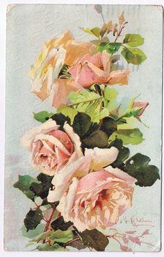 Artist Signed Postcard Catherine Klein Roses Postmarked Berlin Ontario 1909 | eBay