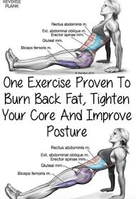 One Exercise Proven To Burn Back Fat, Tighten Your Core And Improve Posture(Vide. One Exercise Proven To Burn Back Fat, Tighten Your Core And Improve Posture(Video Tutorial) – Toned Chick {Für Gesundheitstipps Pilates Workout, Fitness Workouts, Yoga Fitness, At Home Workouts, Fitness Tips, Fitness Motivation, Health Fitness, Fitness Logo, Fitness Quotes