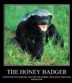 Ain't no use, Honey Badger gonna F you up!