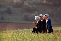 Plain Talk about the Amish: A Woman's Prayer Cap :: CP BLOG