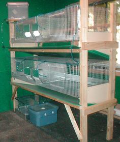 Horrible. Meat rabbit/lab rabbit type cages. Makes me feel a bit ill thinking of rabbits living in something like this.