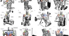 Shoulder Workout Routines - 5 Tips For a Safe and Effective Shoulder Workout.. https://seethis.co/jymOB