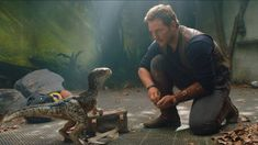 Jurassic World-Fallen Kingdom Trailer: The Crooked Style of Dinosaurs. The new trailer of the Jurassic World: Fallen Kingdom Official Trailer J.Jurassic World: Fallen Kingdom Beyono has directed. Chris Pratt, Blue Jurassic World, Jurassic World Fallen Kingdom, Jurassic World Raptors, Falling Kingdoms, New Movies, Good Movies, Imdb Movies, Movies Online