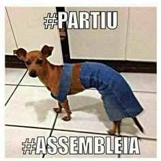 #partiu #assembleia
