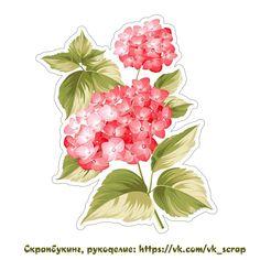 Скрапбукинг, рукоделие, Картинки с цветами