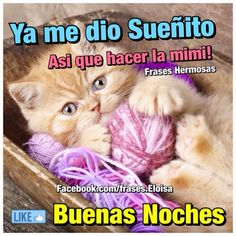 Good Night Wishes, Spanish Quotes, Good Morning Quotes, Bambam, Animals And Pets, Qoutes, Nostalgia, 1, Humor