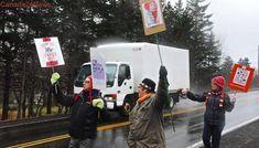 Mini women's march in Nova Scotia village draws half of local population