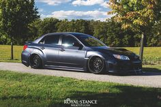 Chase WRX // Royal Stance