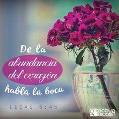 Lucas 6:45 El hombre bueno, del buen tesoro de su corazón saca lo bueno; y el hombre malo, del mal tesoro de su corazón saca lo malo; porque de la abundancia del corazón habla la boca.♔