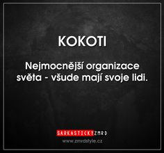 KOKOTI. Nejmocnější organizace světa - všude mají svoje lidi. English Jokes, Savage Quotes, Jokes Quotes, In My Feelings, Sarcasm, Like Me, Funny Pictures, Mindfulness, Facts