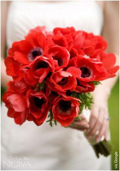 #vermelho #anemona #bouquet
