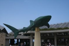 Monuments Churaumi Aquarium