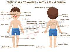 Learn Polish, Polish Language, Poland, Knowledge, English, Education, Learning, Nursing, Core