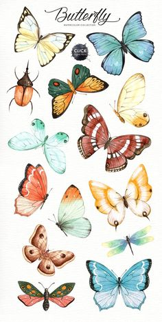 butterflies The set of high quality hand painted watercolor butterfly images in bright and fresh color palette. Included moth, dragonfly and ladybug. What do you get: 21 x Hand painted wa Butterfly Painting, Butterfly Watercolor, Butterfly Wallpaper, Butterfly Sketch, How To Draw Butterfly, Simple Butterfly Drawing, Anime Butterfly, Dragonfly Drawing, Butterfly Artwork