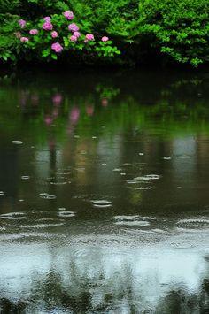 peaceful rain....