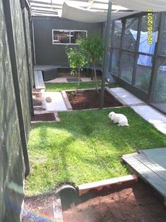 rabbit housing – sharon w. outside rabbit housing – sharon w. Rabbit Shed, House Rabbit, Pet Rabbit, Indoor Rabbit House, Indoor Rabbit Cage, Rabbit Garden, Rabbit Run, Bunny Cages, Rabbit Cages