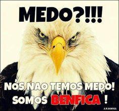 CARREGA BENFICA! ❤✌