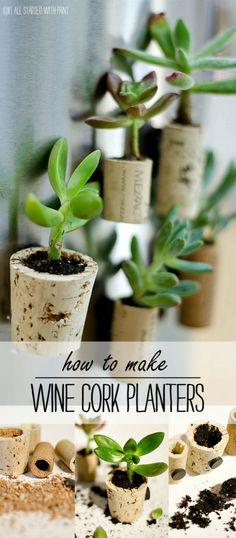 Succulent Planter Ideas: Wine Cork Magnet Planters