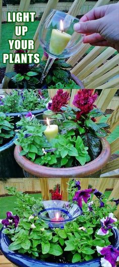 candles for the evening in your planters