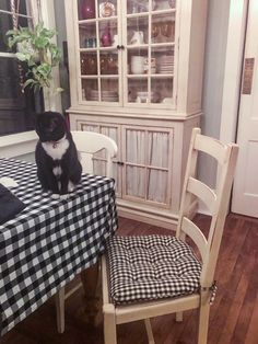 """""""Exactly what I wanted. We love these cushions. They are well made and super comfortable. Best I could find!"""" Lynn Z., Stony Brook, NY We love your black and white kitty! We always recommend coordinating your decor to the color of your pets. Ladder Back Dining Chairs, Farmhouse Dining Chairs, Dining Chair Cushions, Foam Cushions, Table Linens, Find Furniture, Vintage Furniture, Black And White Chair, Black White"""