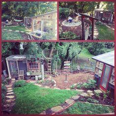 Our backyard  #chicken coop #greenhouse #hammock #rusticroost