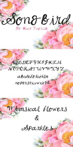Songbird whimsical font by Kay. Wedding Fonts. $15.00