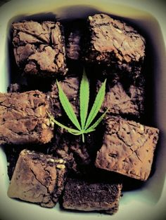My two favorite things! Brownies are my favorite and I love me some marijuana:-)