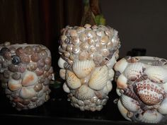 Homemade li'l flower pots from seashells..