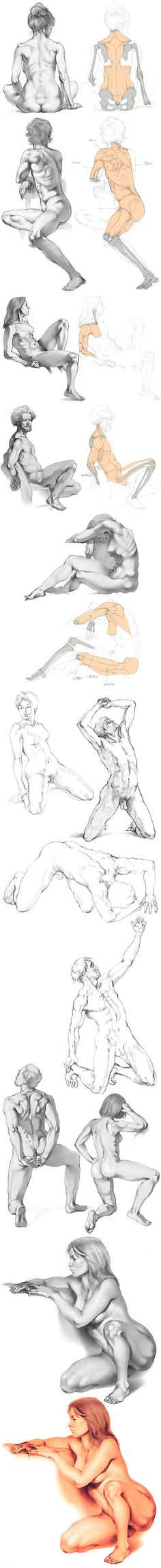 Some helpful anatomy diagrams for figure drawing. Academic Drawing, Drawing Studies, Drawing Skills, Art Studies, Life Drawing, Drawing Sketches, Painting & Drawing, Art Drawings, Anatomy Drawing