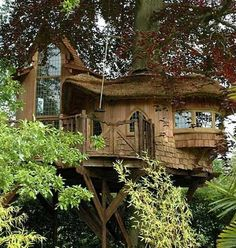 Beautiful little hobbit treehouse in the UK.