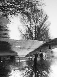 #photography #lake #oldpicture #upsidedown #blackandwhite