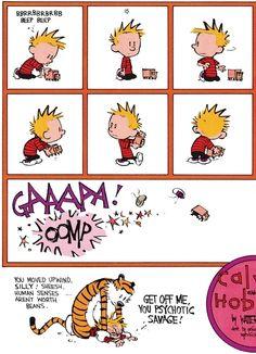 Calvin and Hobbes, Sunday Splitz! (1 of 2 DA) - Human senses aren't worth beans.   GET OFF ME YOU PSYCHOTIC SAVAGE!