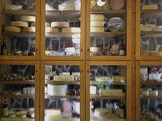 cheese-fridge