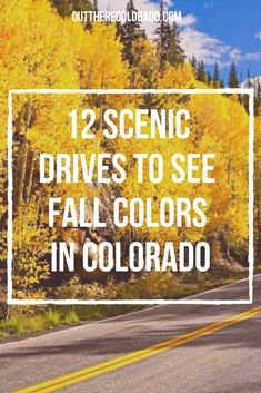 Toss your hiking boots aside, hop in the car, and get ready for a colorful adventure across some of the most magnificent landscapes in Colorado. Here's your go-to guide for seeing fall foliage across the beautiful Centennial State. #OutThereColorado #Travel #Colorado #ColoradoVacation #ColoradoHiking #ColoradoThingsToDo #ColoradoHikes #Mountains #Adventure #ColoradoFall #ColoradoPhotography #ColoradoWildlife #Mountains #Explore #REI #optoutside #Hike #Explore #Vacation #USTravel Hiking Gear, Hiking Boots, Colorado Hiking, Best Hikes, Us Travel, Things To Do, Trail, Wildlife, Country Roads