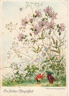 AK Kinder Fritz Baumgarten Insekten im Gespräch Blumen | eBay