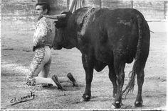 Desplante de rodillas, Gregorio Sánchez