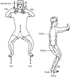 LA DANZA DEL DRAGON: sana su cuerpo, hasta elevar su nivel de energìa. Es una oraciòn corporal para que el espiritu divino fluya a travès del cuerpo .Ayudarà a su cuerpo a convertir grasa en energìa sùtil con la torsiòn de caderas y movimiento de los muslos remodelarà su cuerpo y desarrollarà flexibilidad.