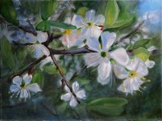 Peter Valve: Blossom of plum tree. Oil painting 40x30 cm