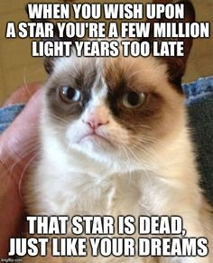 Grumpy Cat | WHEN YOU WISH UPON A STAR YOU'RE A FEW MILLION LIGHT YEARS TOO LATE THAT STAR IS DEAD, JUST LIKE YOUR DREAMS | image tagged in memes,grumpy cat | made w/ Imgflip meme maker